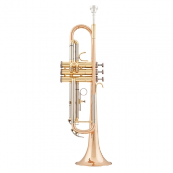 Arnolds & Sons ATR-4200G B-Trompete, goldmessing
